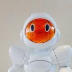 Come funziona il robot Biro?