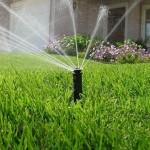 Come sapere se l'acqua di un pozzo è potabile?